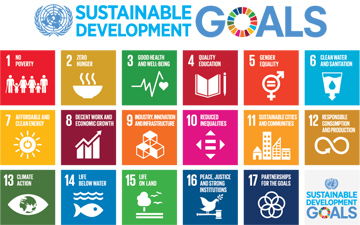 Call for Proposals: SDG Action Competition